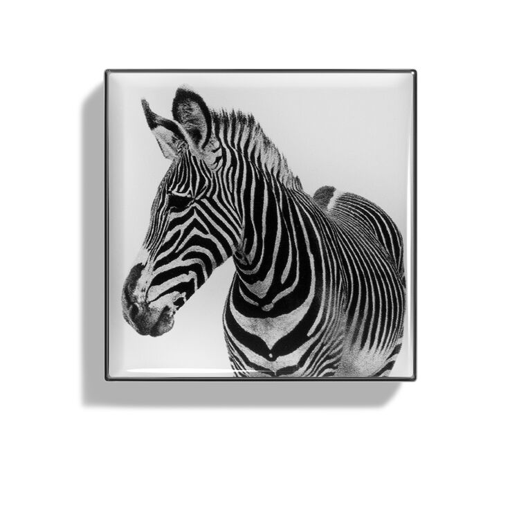Luminescent Eye Shade, ZEBRA, large