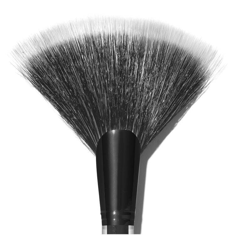 The Large Fan Brush, , large