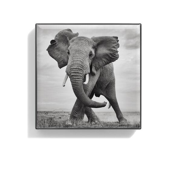 Luminescent Eye Shade, ELEPHANT, large, image2