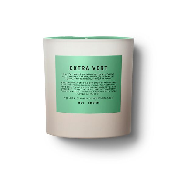 Extra Vert Pride Candle, , large, image1
