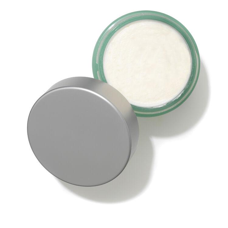Rosa Arctica Cream, , large