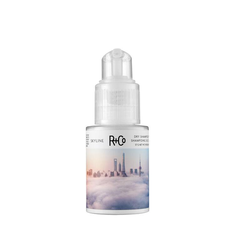 Skyline Dry Shampoo Powder, , large