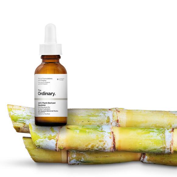 100% Plant-Derived Squalane, , large, image6