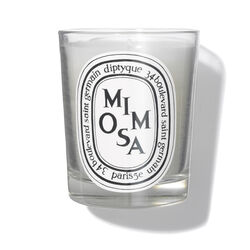 Mimosa Scented Candle, , large