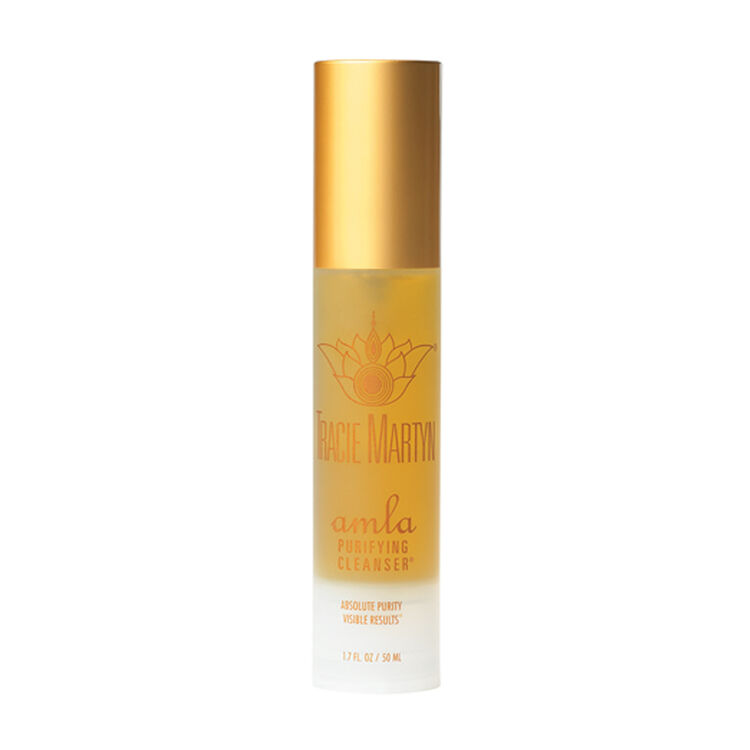 Amla Purifying Cleanser, , large